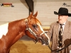Willem en PV Prince Imprinted 2011