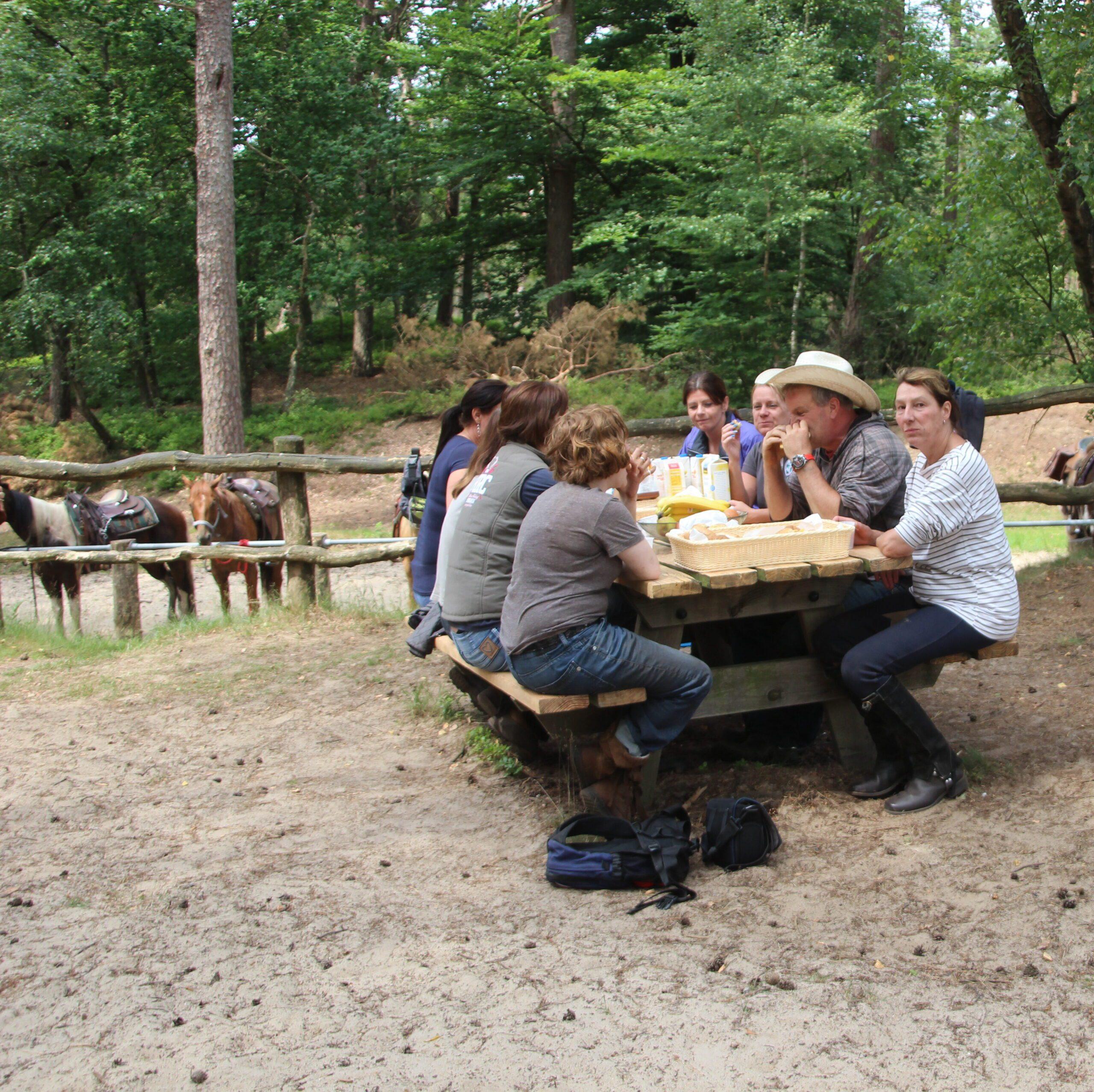 Picknick naast de paarden tijdens de  dagtocht van The Mill Ranch door het Nationale Park de Hoge Veluwe
