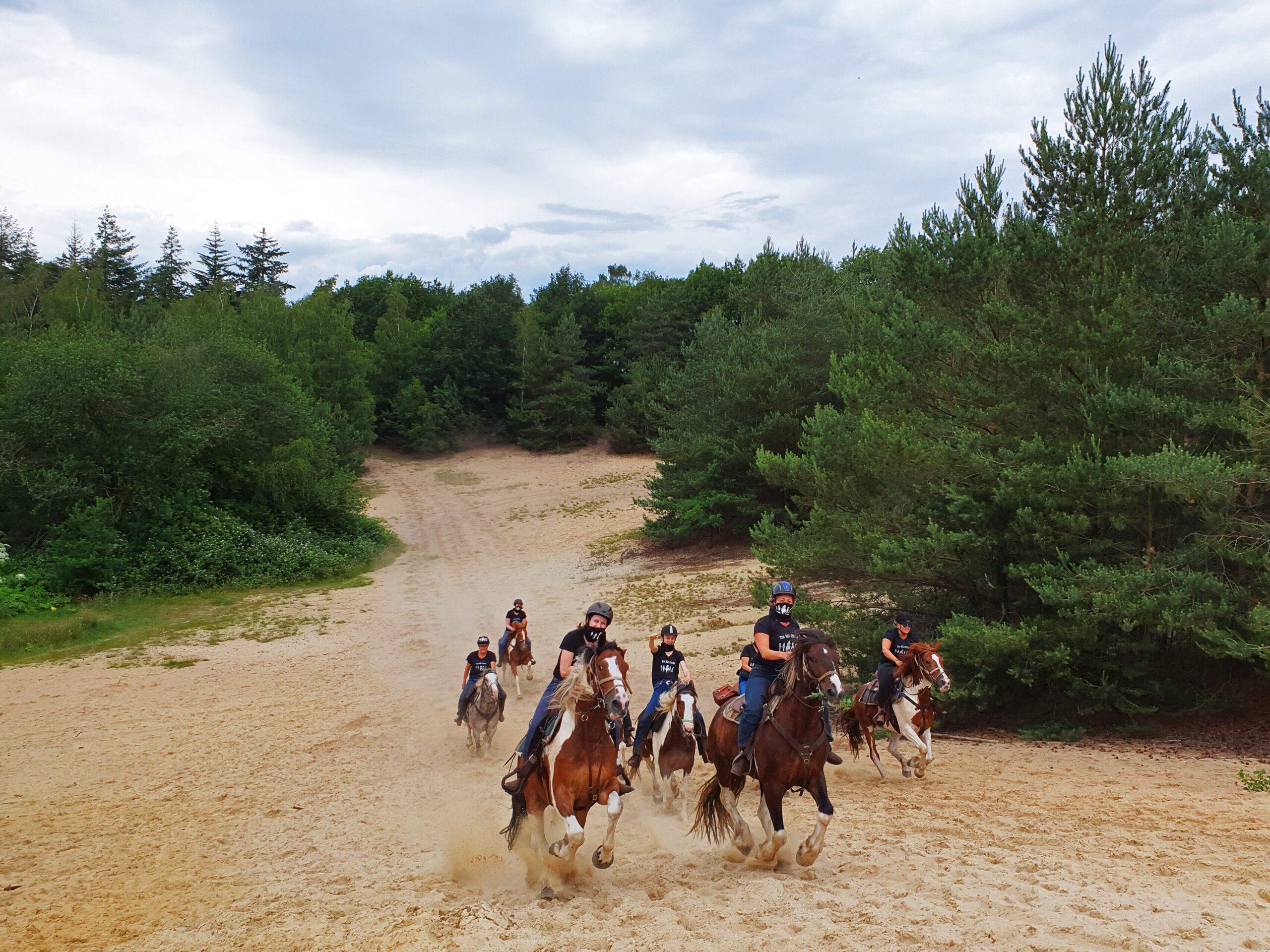 Galop Wekeromse Zand (Zandrit bij The Mill Ranch)
