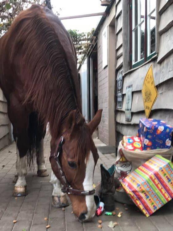 Paard met kerstcadeaus
