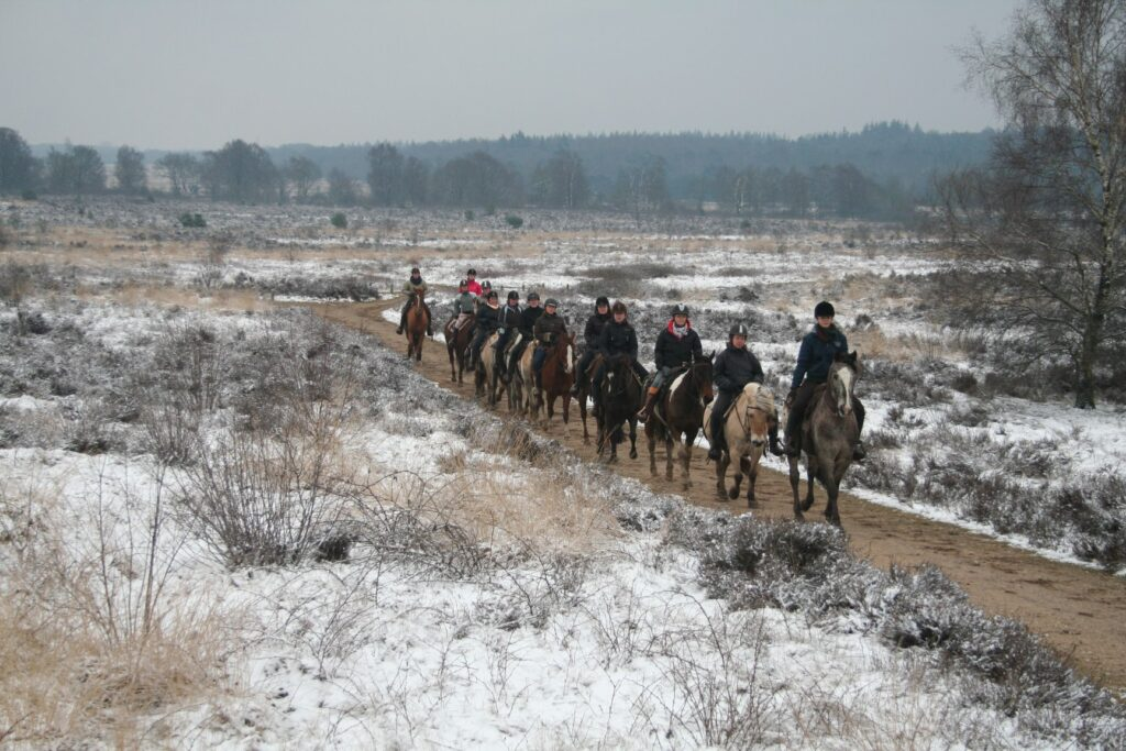 In Nederlands sneeuwt het niet vaak, maar áls er sneeuw ligt, dan kun je bij The Mill Ranch in de sneeuw paardrijden.