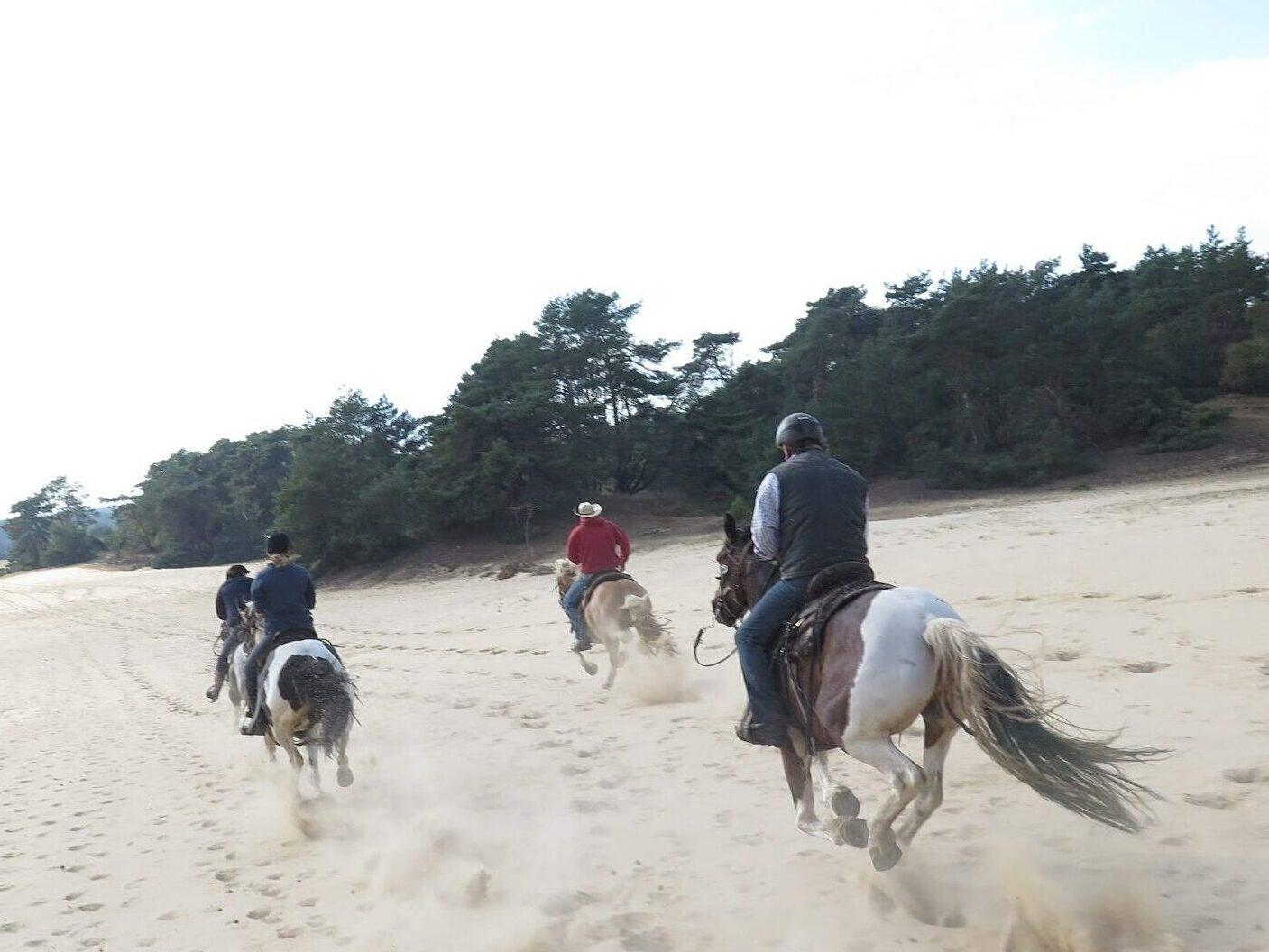 Lijkt bijna op een strandrit: Paardrijden over de Wekeromse Zandverstuiving tijdens een buitenrit bij The Mill Ranch