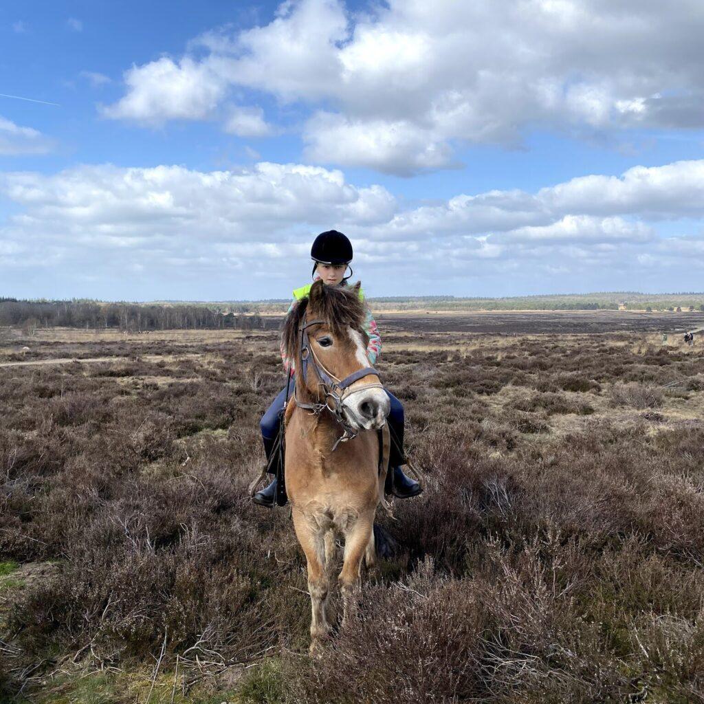 Bij westernstal The Mill Ranch kunnen ook kinderen komen paardrijden.