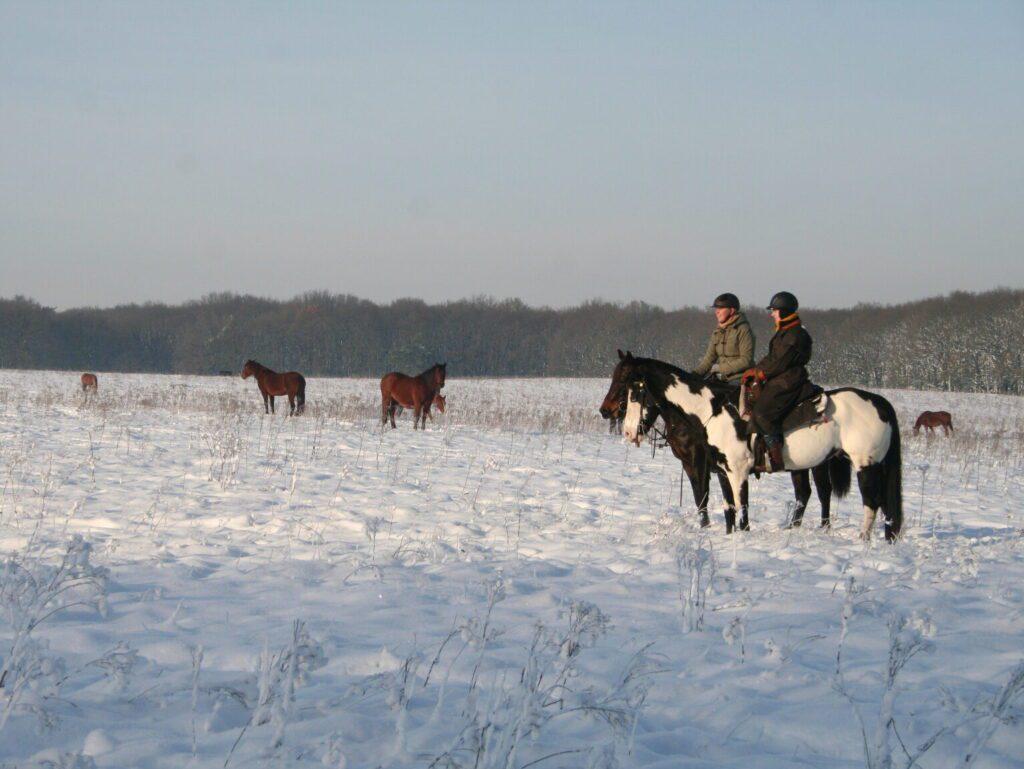 Bij westernstal The Mill Ranch kun je in de winter buitenritten in de sneeuw maken. Op deze foto zie je ruiters in de sneeuw die de wilde paarden observeren