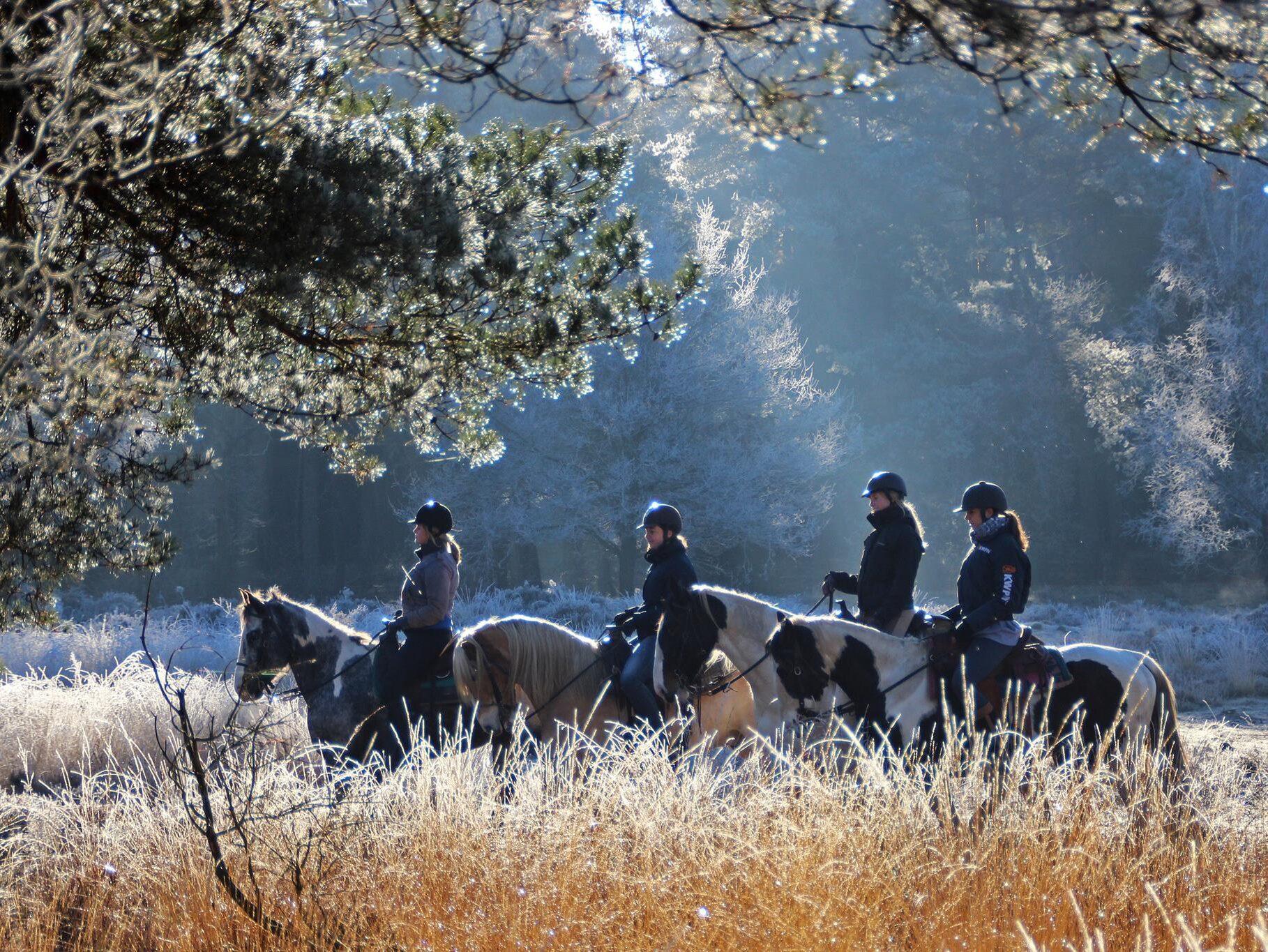 Buitenrijden in westernstijl bij The Mill Ranch