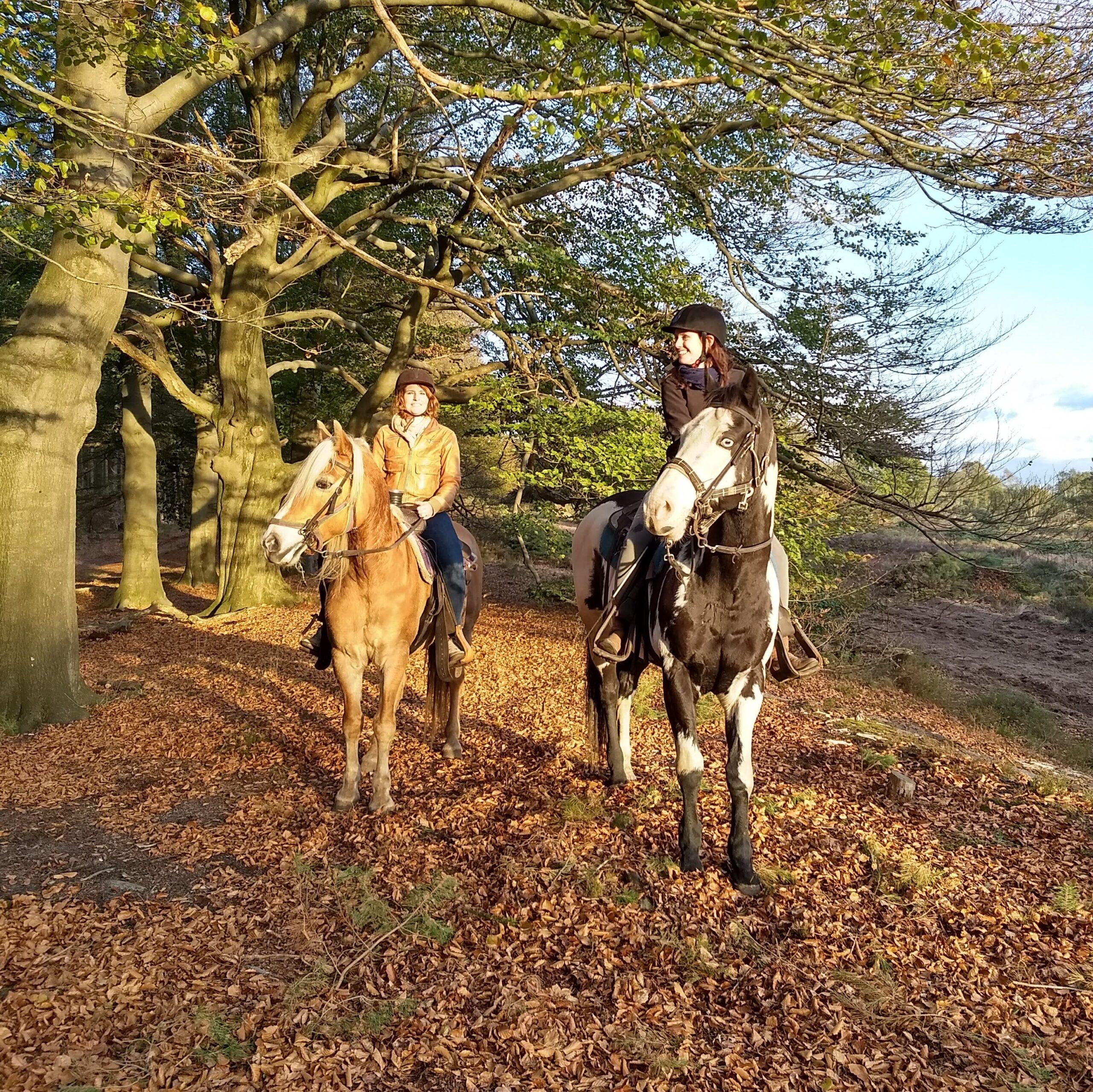 Paardrijden in de herfst: buitenrit bij The Mill Ranch