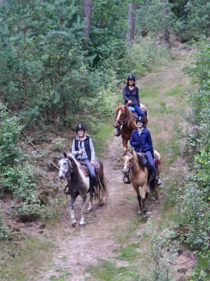 urenlang paardrijden door het bos bij The Mill Ranch