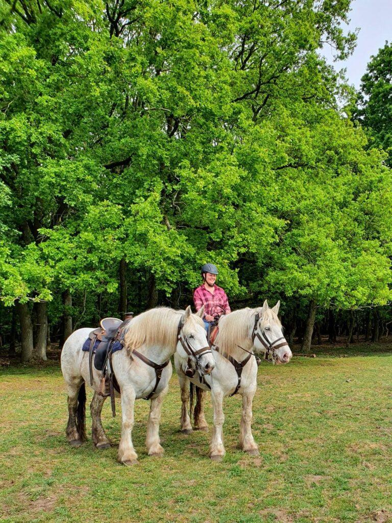 Op deze twee grote paarden van The Mill Ranch kunnen ook de zwaardere ruiters een buitenrit op de Veluwe maken.